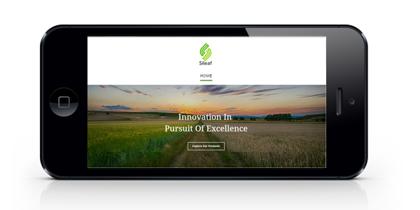 silaef website horizontal mobile mockup